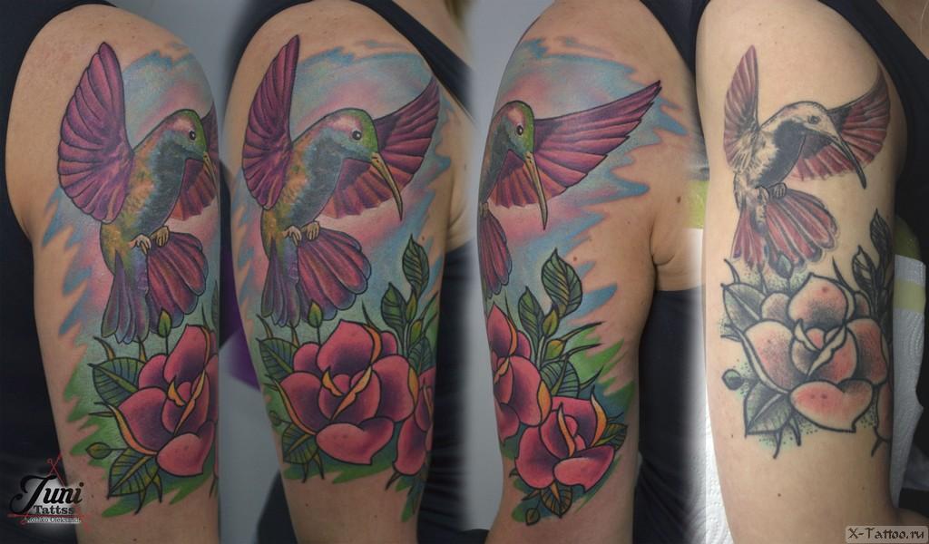 колибри для девушки