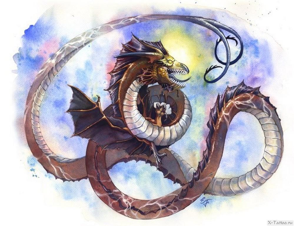 eskiz tatu drakona akvarel