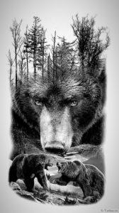 semya medvedey
