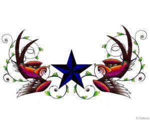 sinyaya zvezda