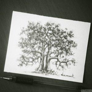 pyshnaya listva