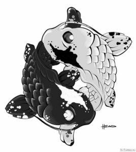 yaponskie karpy