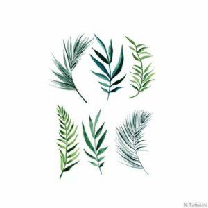 zelenye sketchi