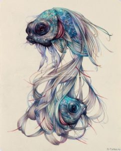 dve rybki
