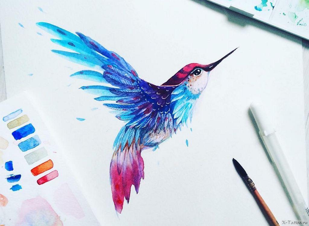 eskizy tatu kolibri