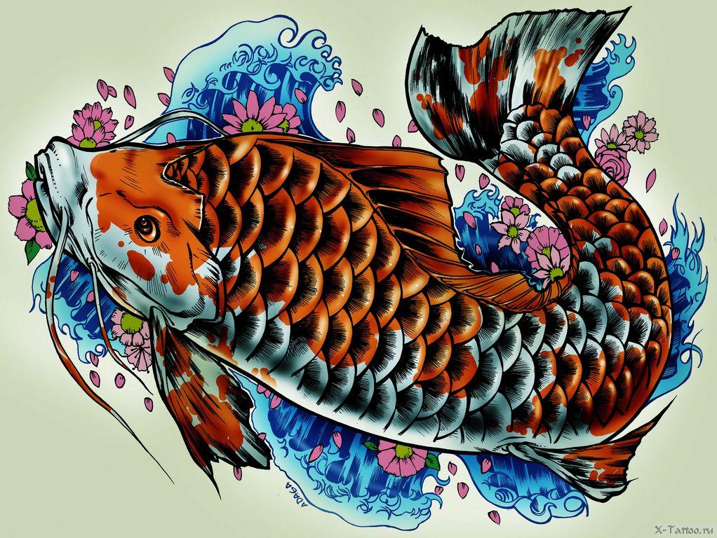 картинки рыбки для карп как оказалось